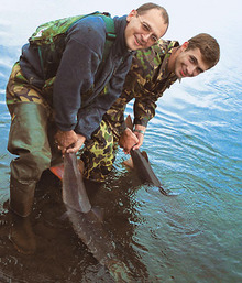 Image from www.fishband.ru