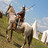 Helmeted man rides a horse