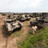 At the demonstration area. T-90 tanks produced by UralVagonZavod plant are on the right.
