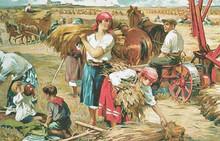 Пичугин. Колхоз в работе. 1930