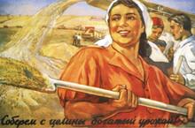 Плакат 1954 года  Соберем с целины богатый урожай
